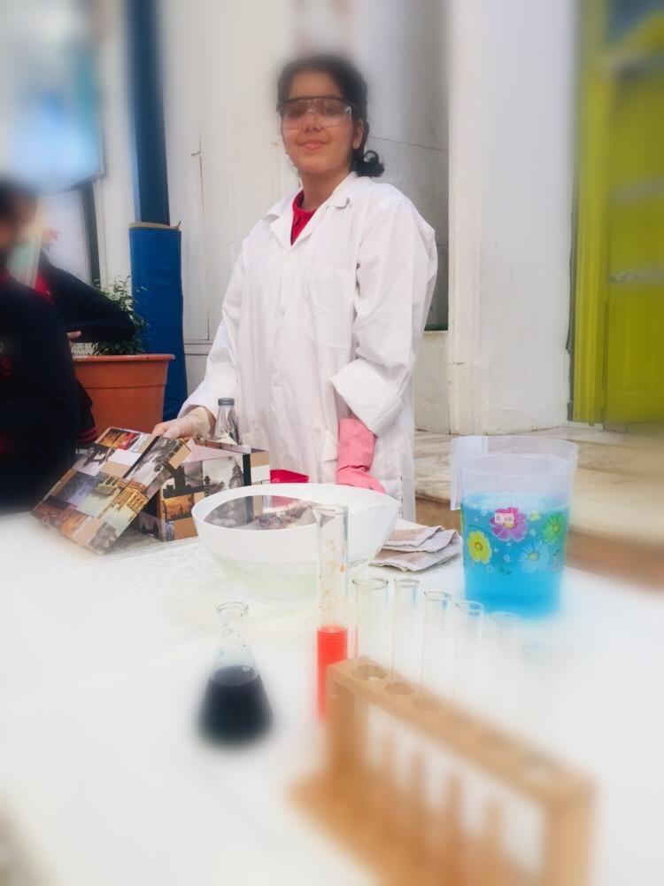MIS Science Fair